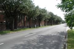 Limhamn